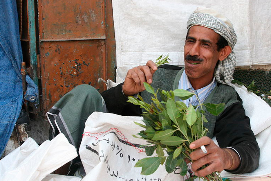Canada's Khat Ban is a Good Old-Fashioned Racist Throwback