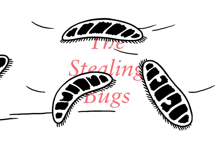 Banner for The Stealing Bugs, a comic by Michael DeForge