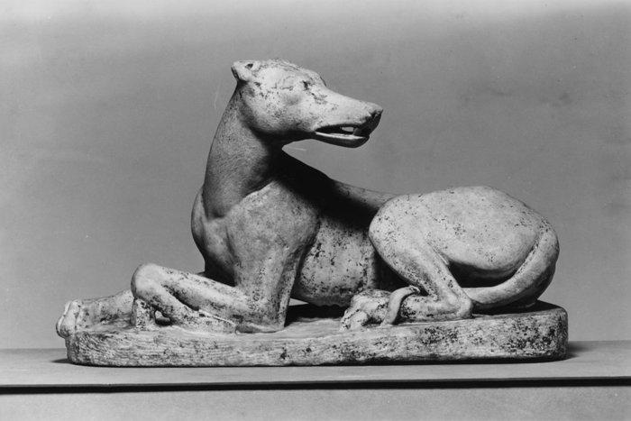 Roman Dog via Wikimedia